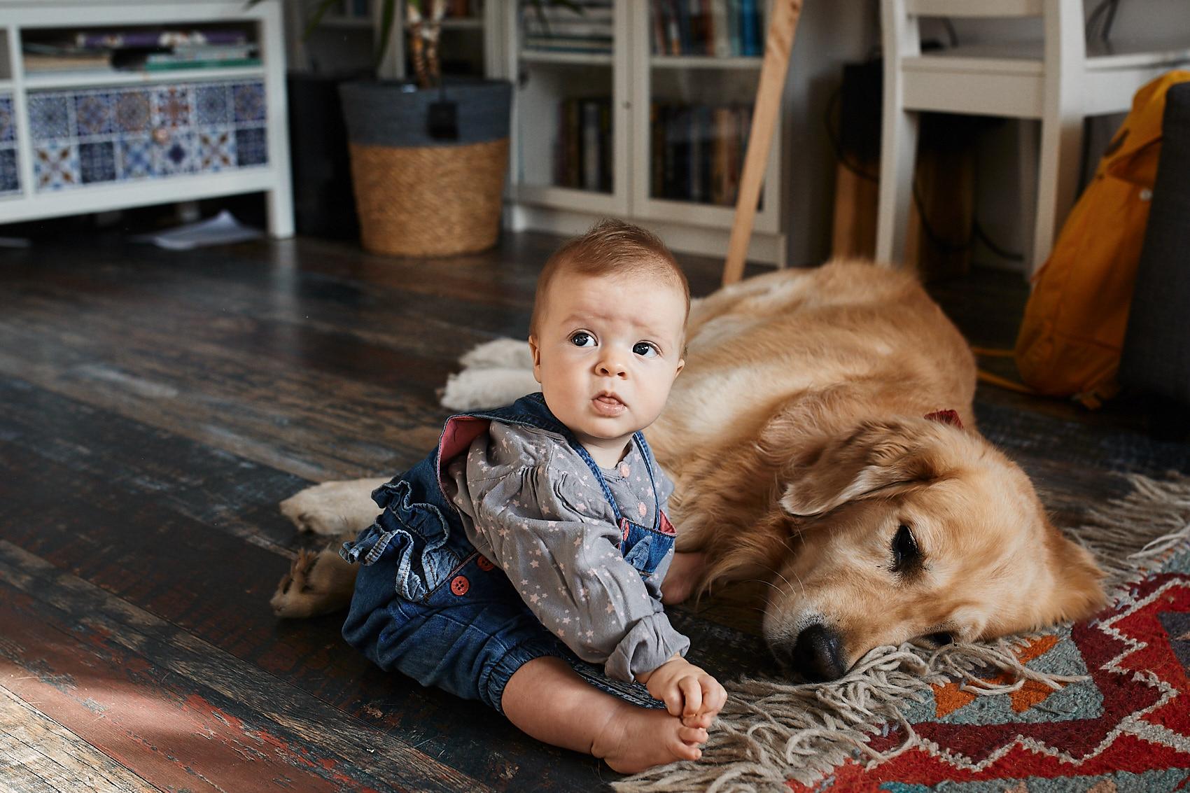 dziecko i pies sesja fotograficzna rodzinna warszawa